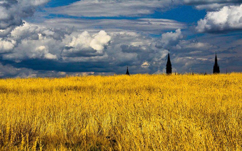 Україна в серці — Галина & Штыпель